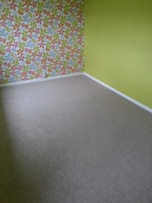 100% Polyproylene Bedroom Carpet