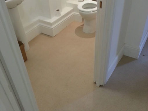 Plain Bathroom Vinyl Flooring