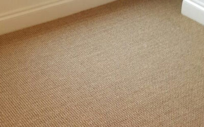 Sisal Carpet Pros and Cons