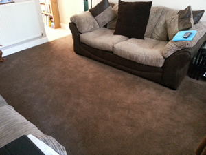 100% Polyproylene Bedroom Carpet